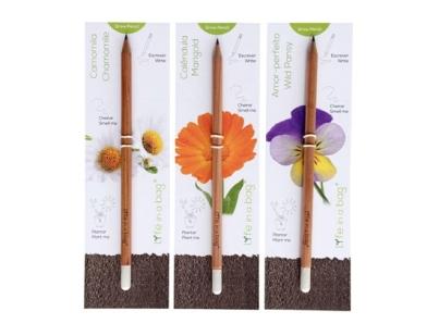 rayonnantes cadeau noel bio cécile limorté crayon fleur